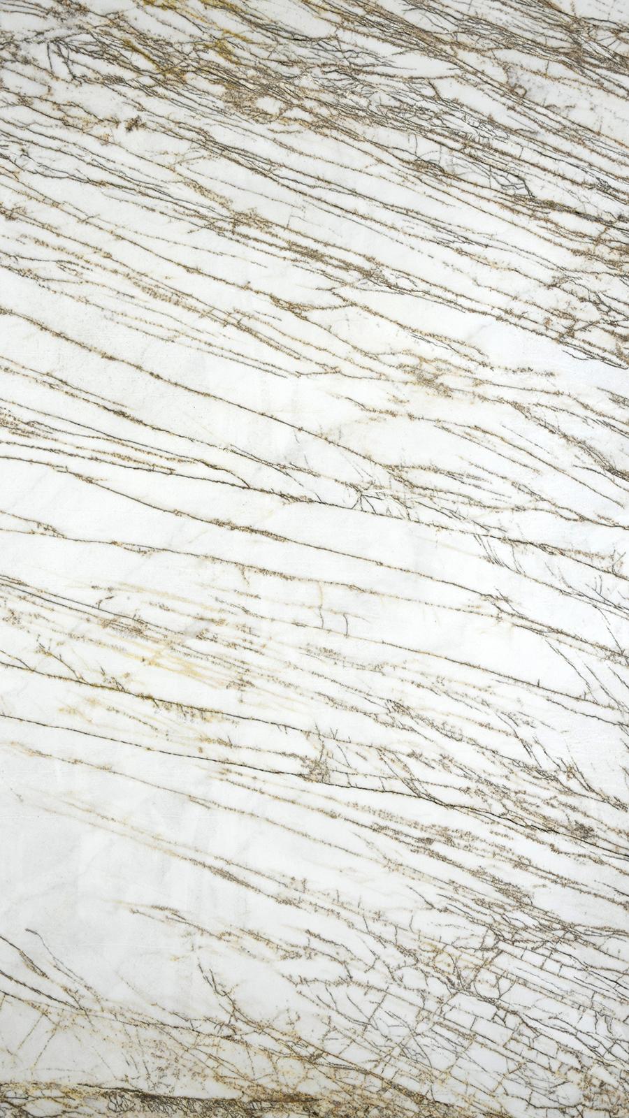 Golden Raddix Marble