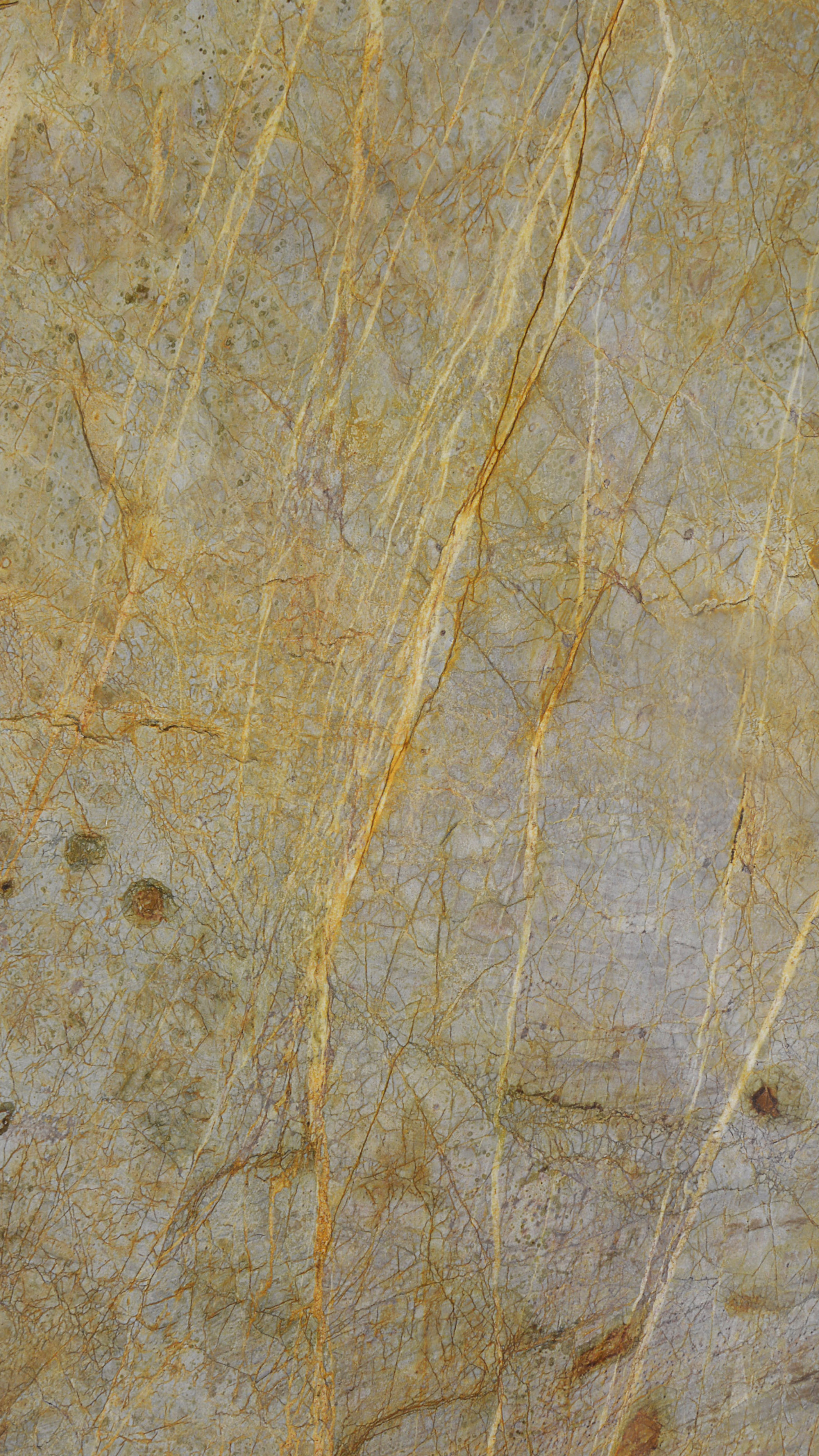 New Golden Zieler Quartzite