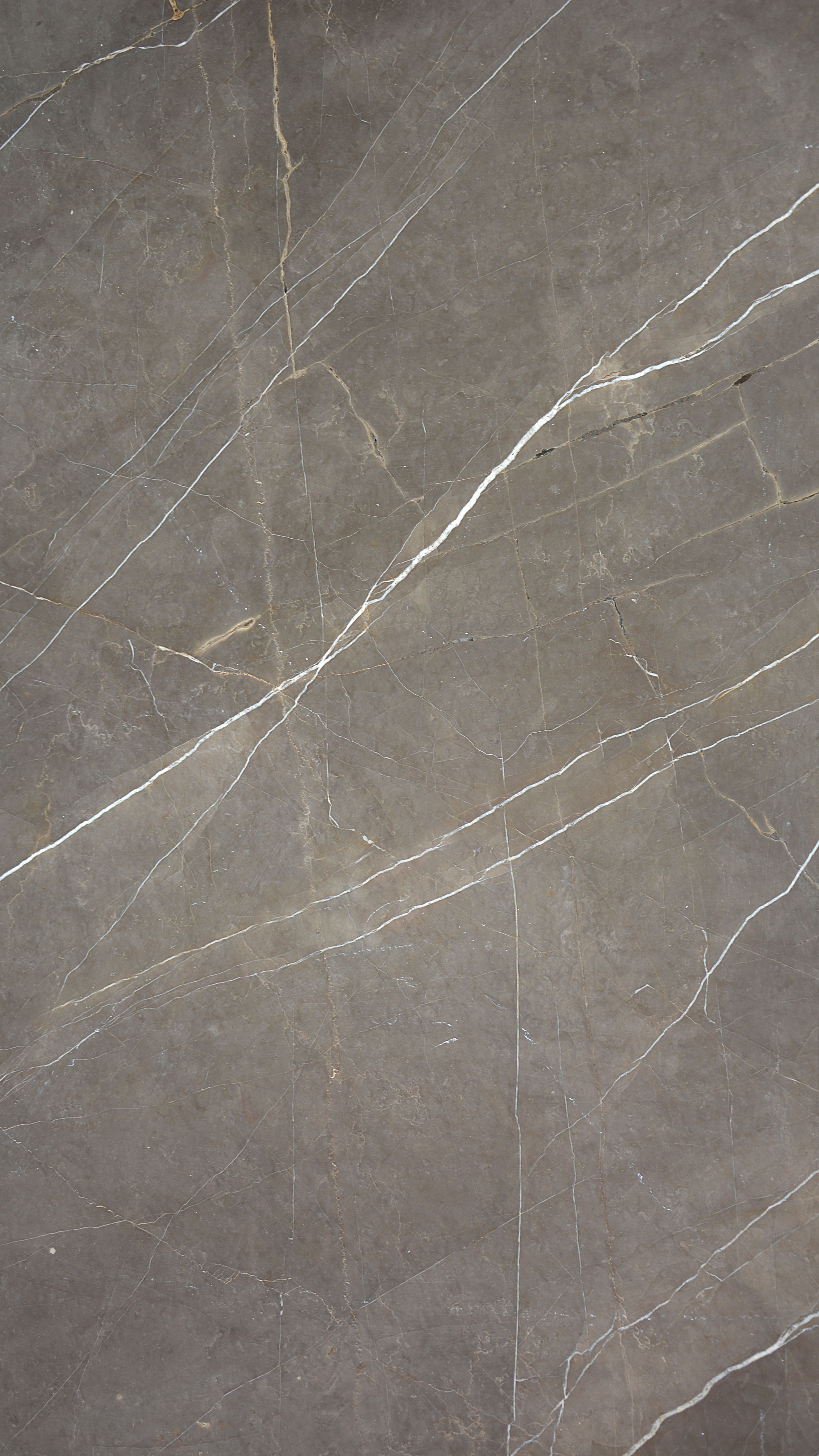 Gris Pulpis Marble