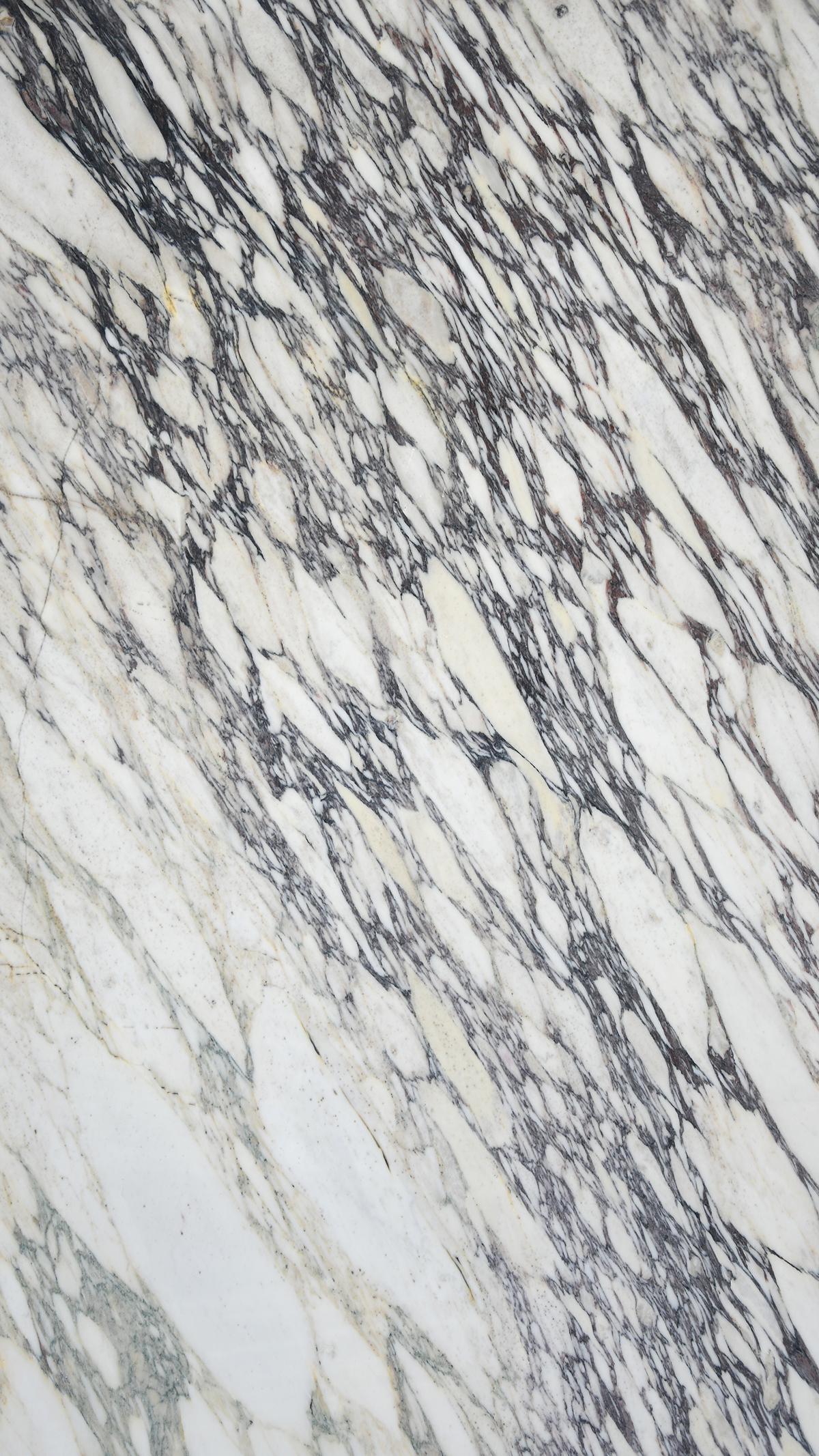 Calacatta Capraia Marble