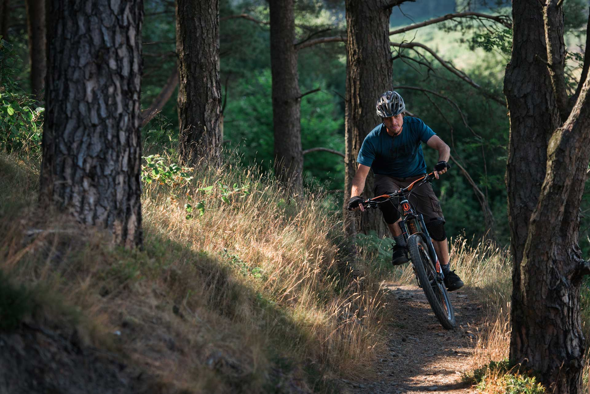A mountain biker traveling at speed through the woodland