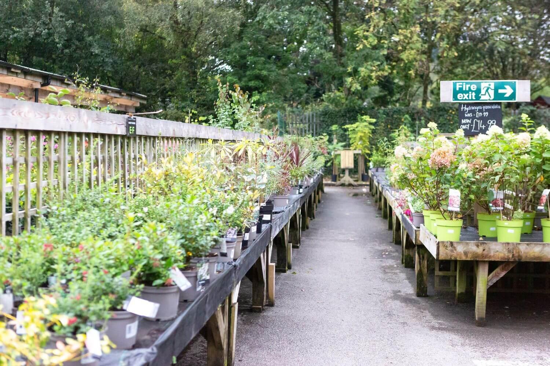 Pyle Garden Village