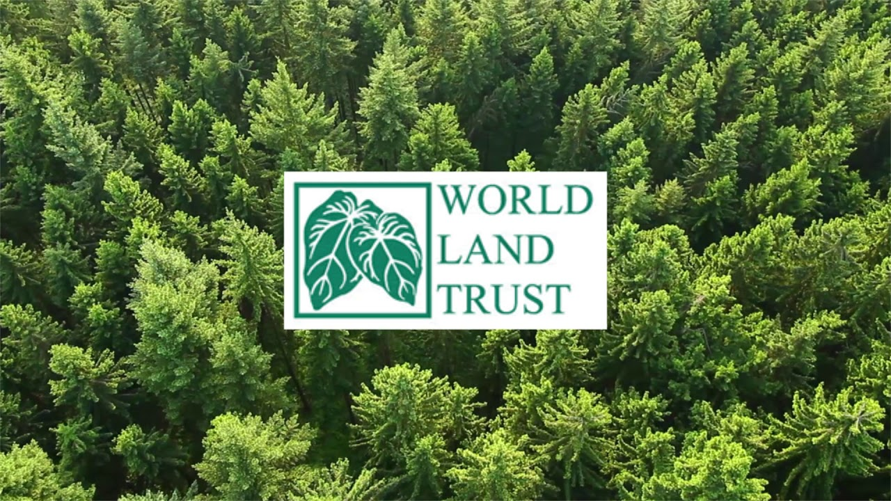 Nightwish partners up with World Land Trust charity!
