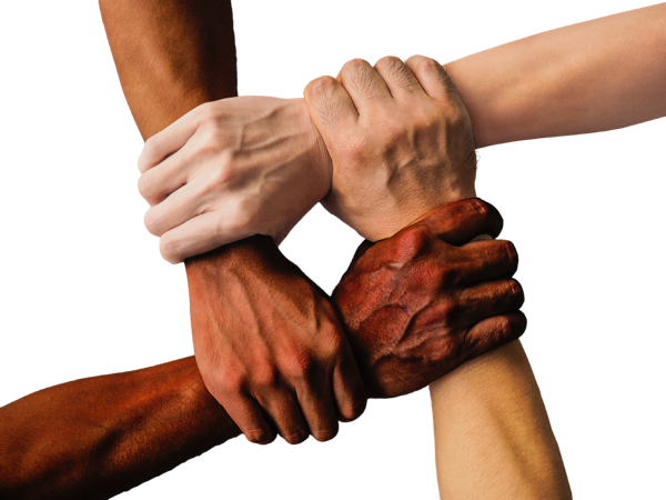 Building a Stronger Workplace Through Diversity and Inclusion