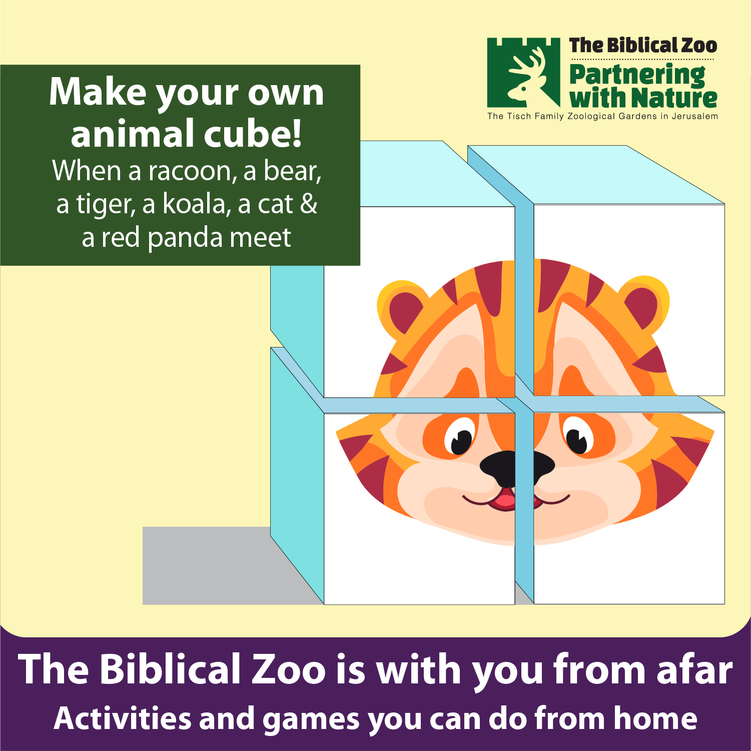 zoo puzzle for kids