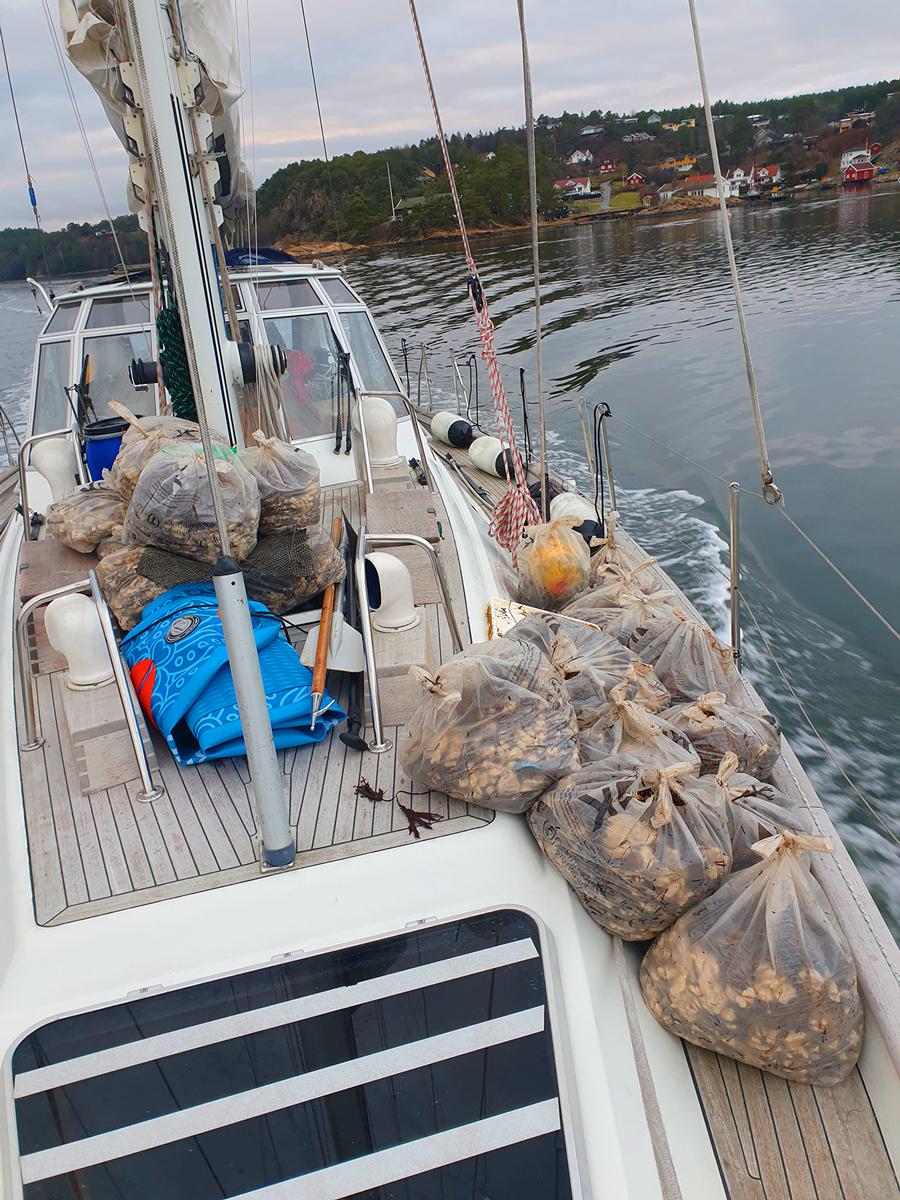 Seilere plukker søppel og fraker med seilbåt