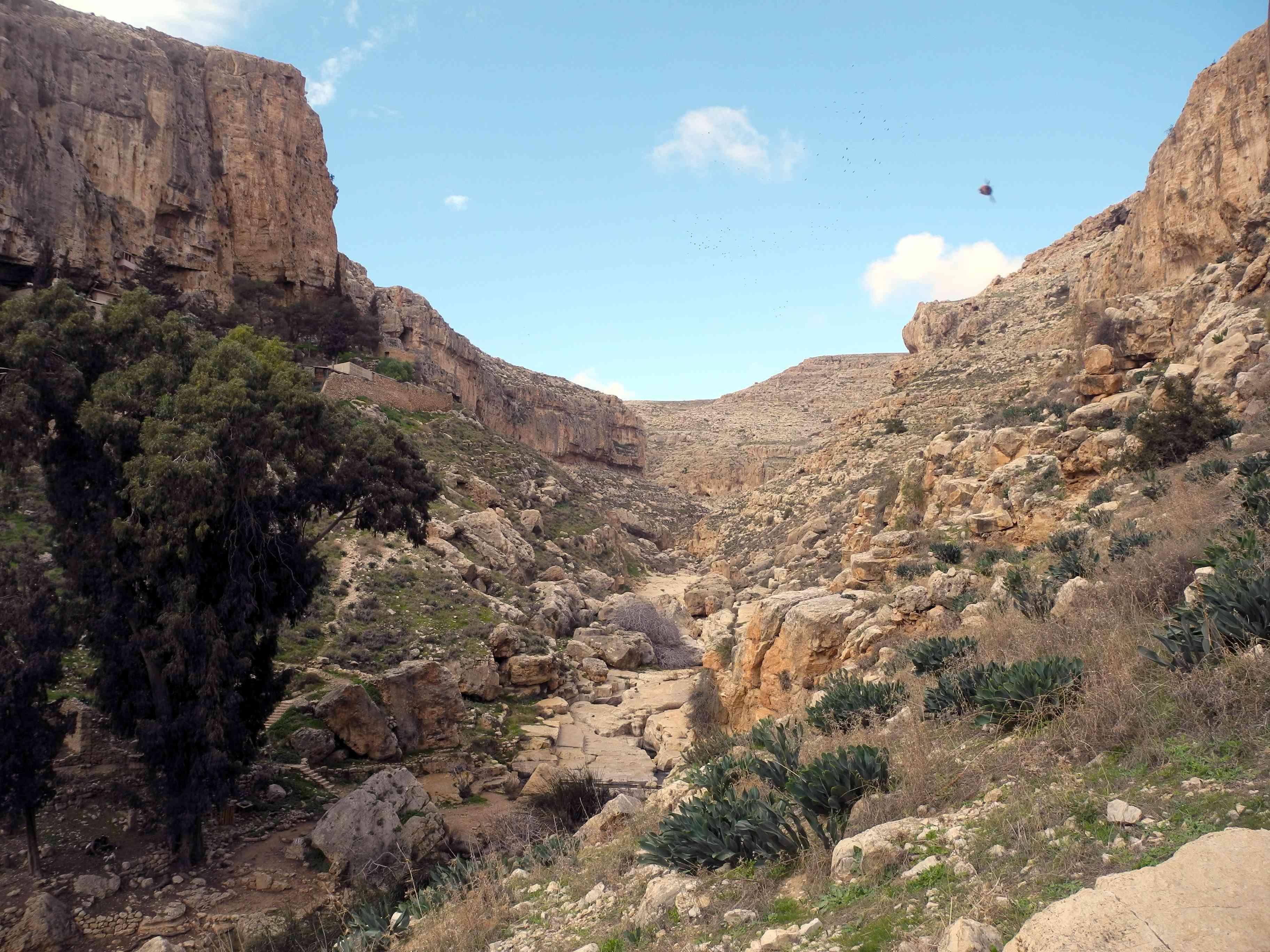 Il paesaggio della falesia, Palestina