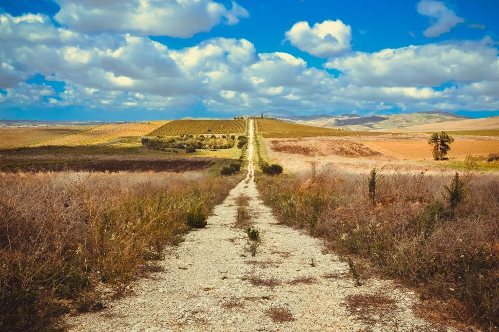 Una strada lunga e dritta con campi su entrambi i lati