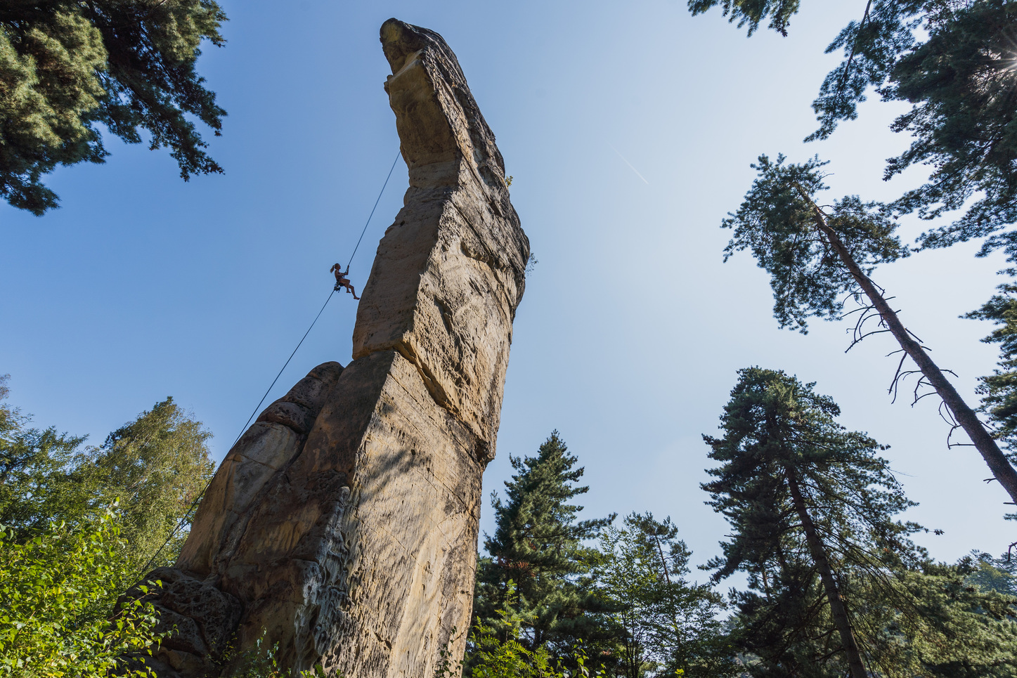 A rock climber rapelling from one of the sandstone towers in the Cech Paradise