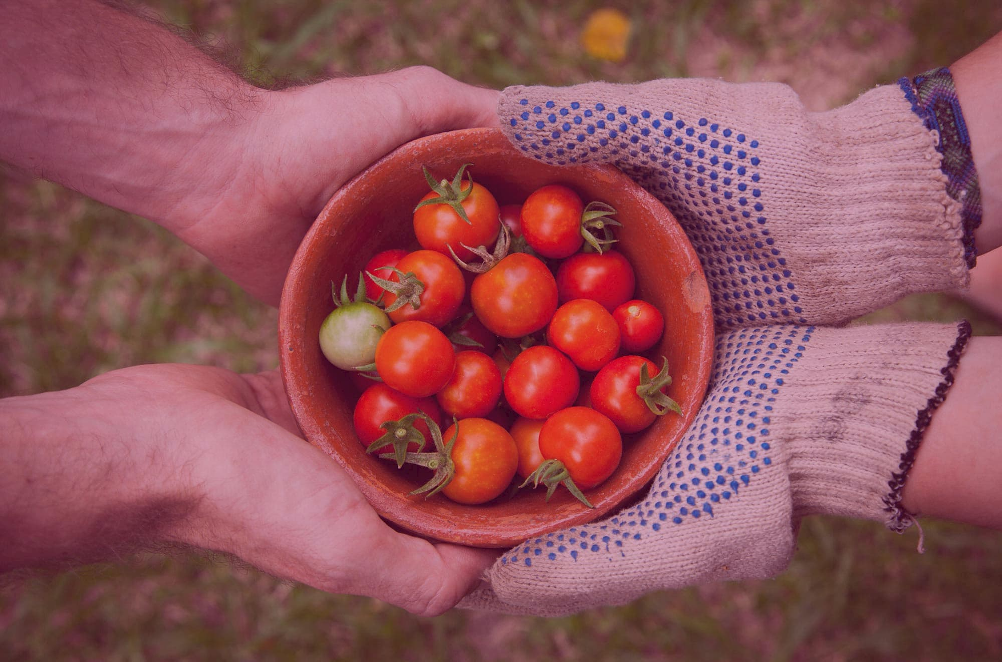 4 reasons kindness is a crucial ingredient in the startup recipe