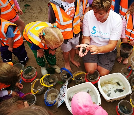 Anne Davidson showing a group of children sea creatures in her hand