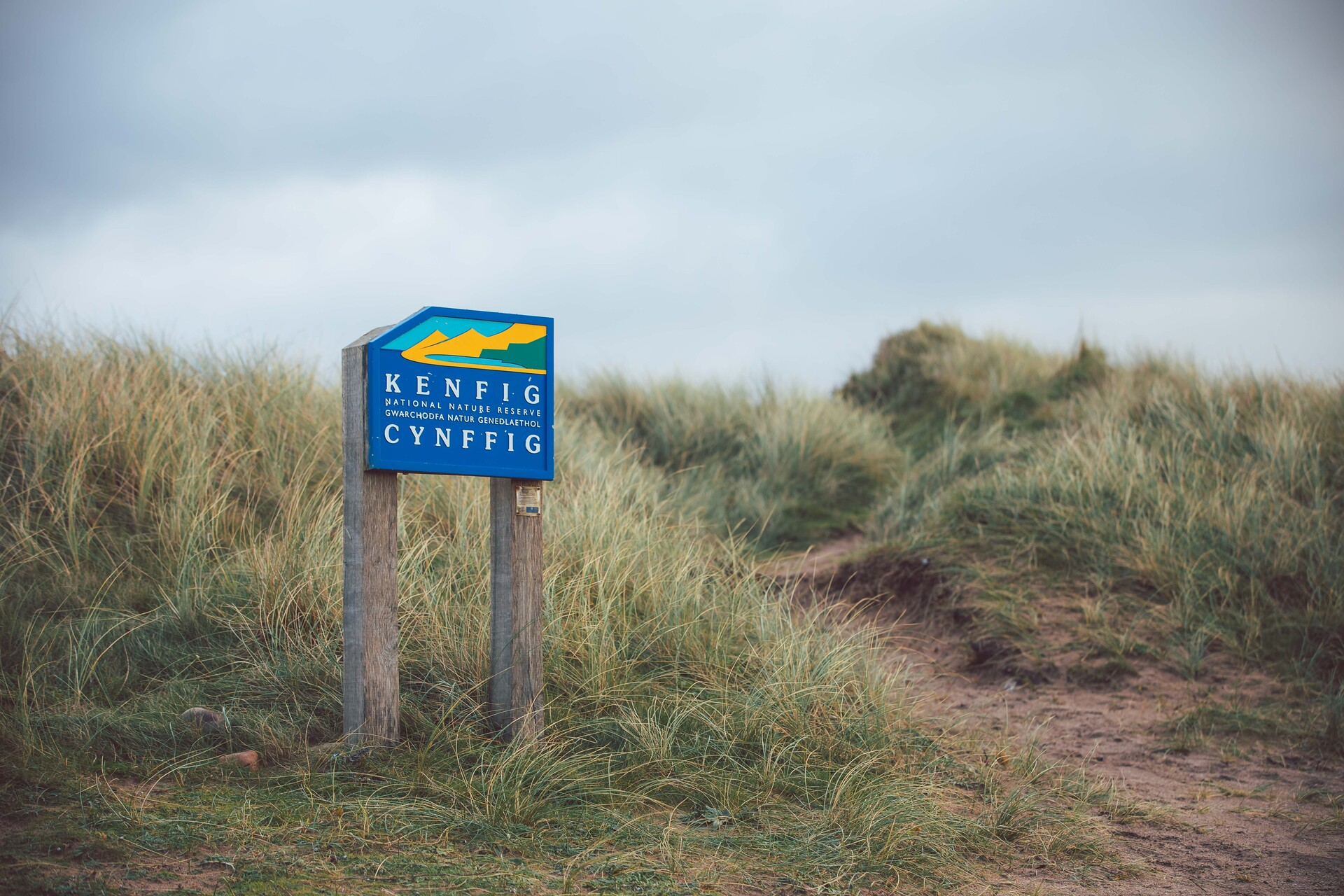 Walk - Kenfig Nature Reserve