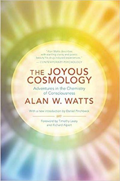 The Joyous Cosmology