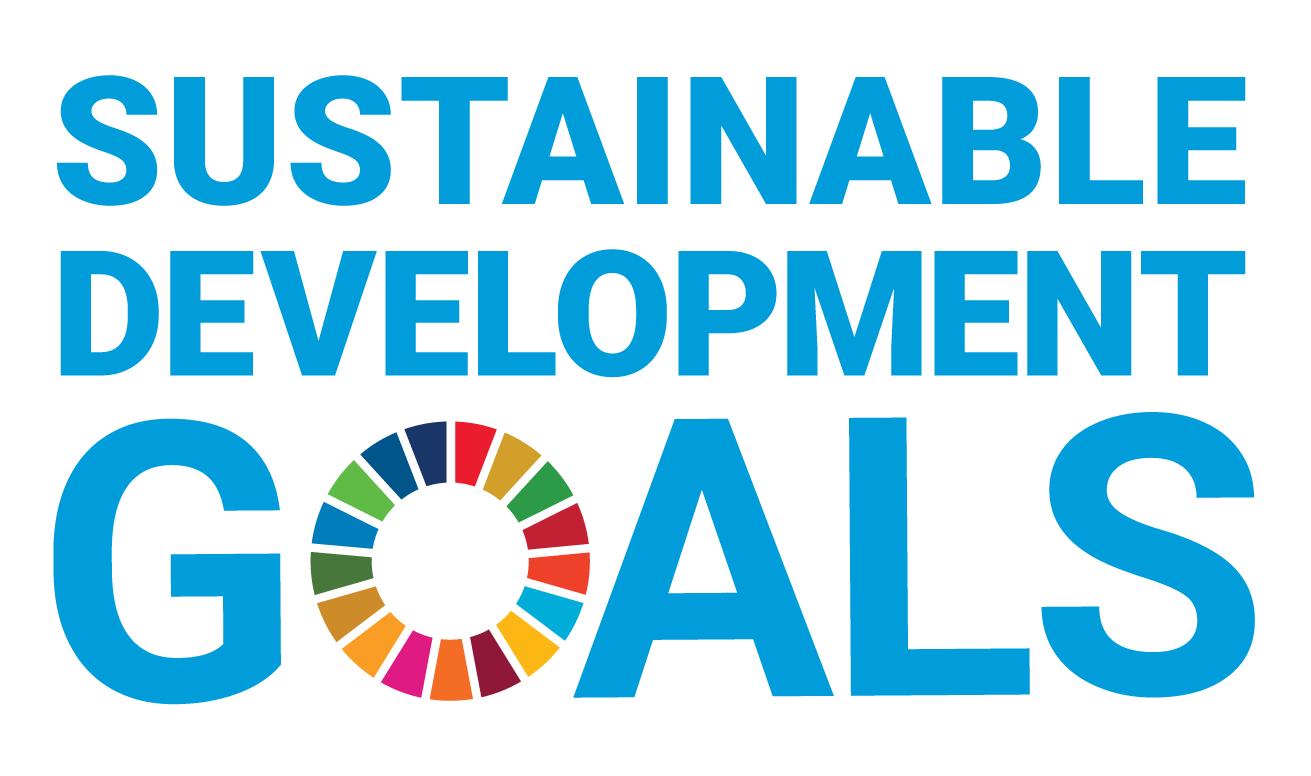 Diese 6 SDGs werden mit WisR umgesetzt