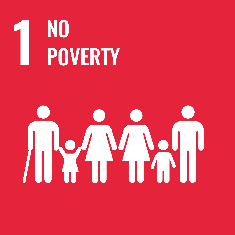 WisR ROI SDG 1