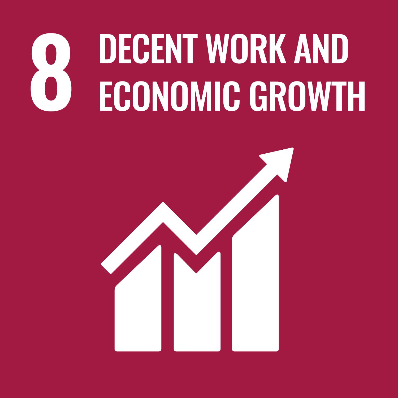 WisR ROI SDG 8