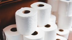 Picture of stack of toilet paper