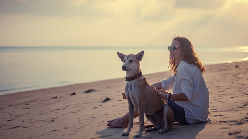 Woman and dog sitting on the beach at sunset
