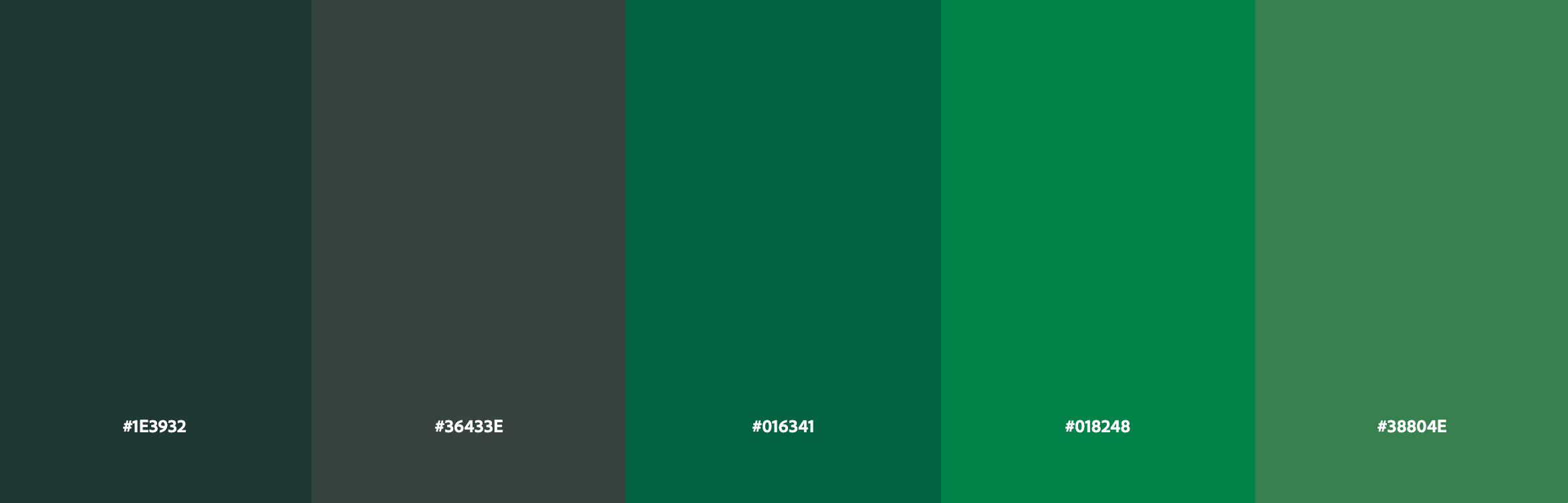 AURUM Fit Color Palette green 1