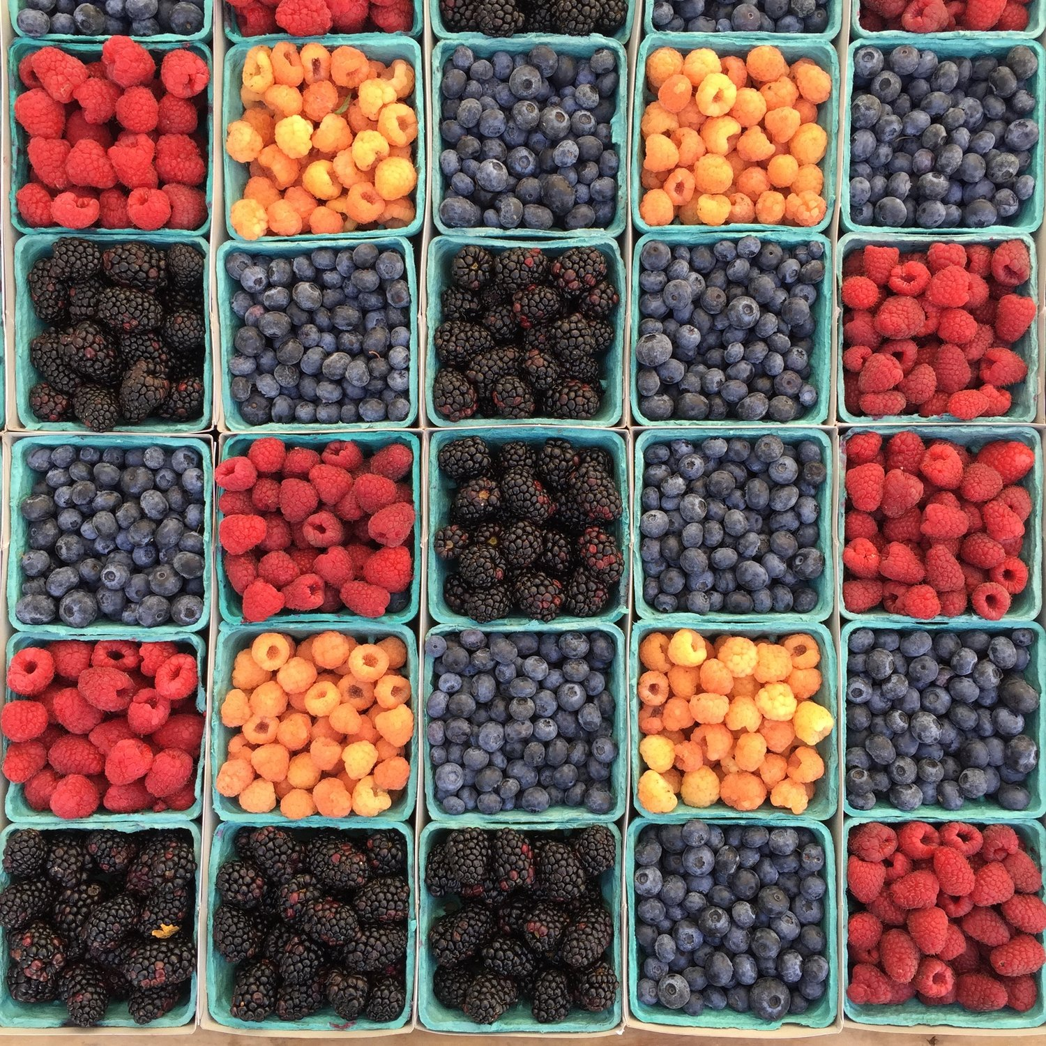 The blueberries are particularly recommended because they contain the antioxidative polyphenols.