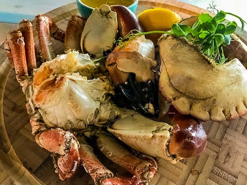 Crab Shed Salcombe:  crab of the very best quality and freshness from the South Devon coast