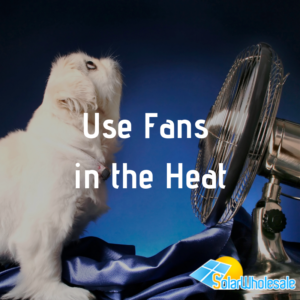 10 Ways to Save Electricity | Use Fans in the Heat
