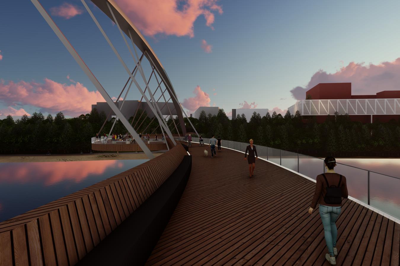 Kotahitanga Pedestrian Bridge