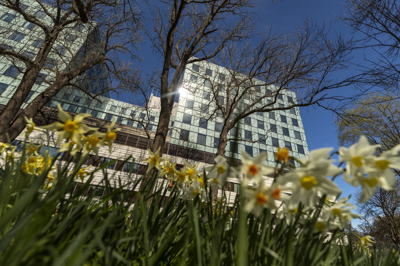 Collaborative Design Approach Creates Resilient Hospital