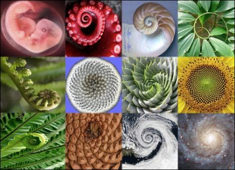 Spiral Effects