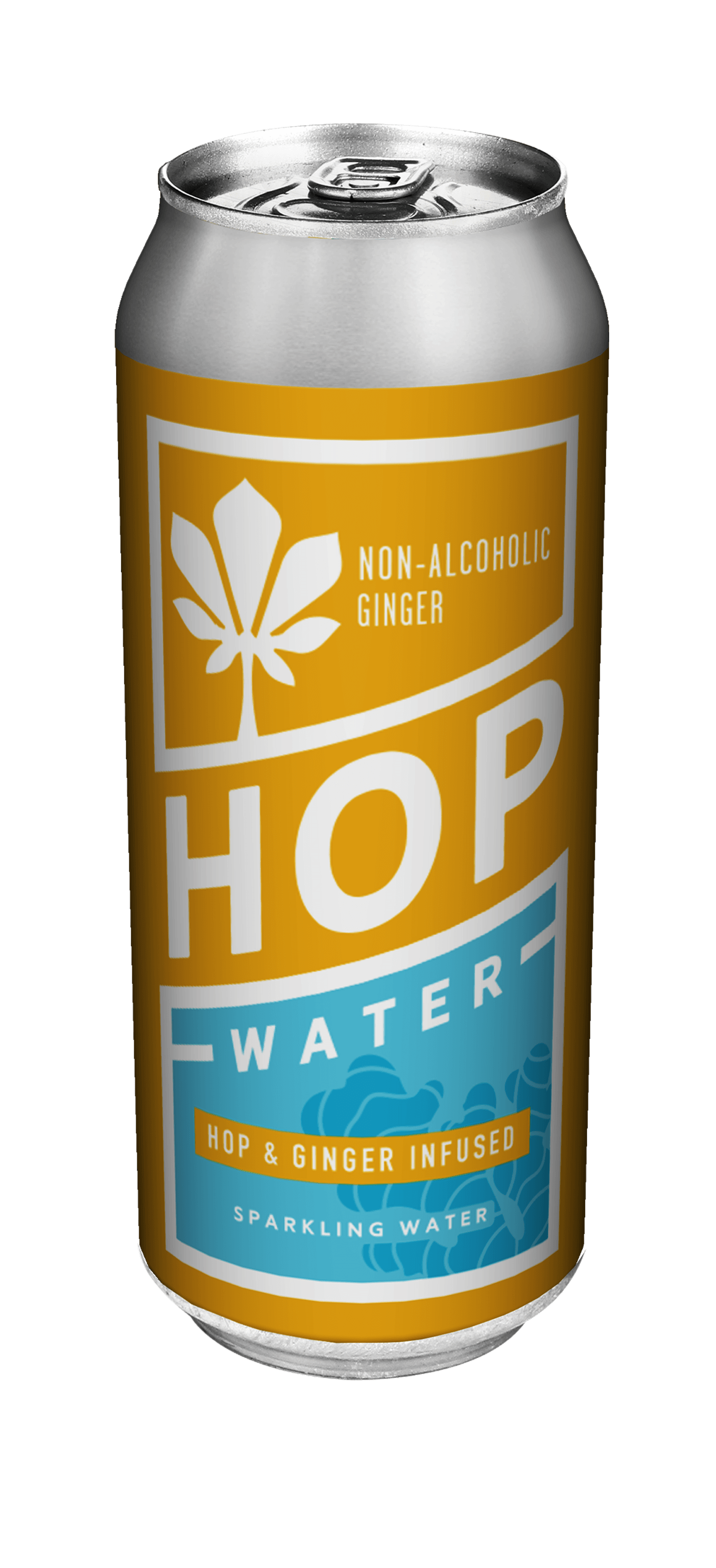 Sparkling Hop Water With Ginger