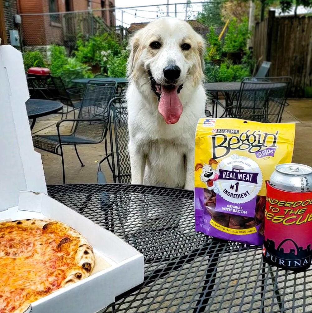 For every sale of Urban Chestnut's Urban Underdog Dinner Pack, Purina will donate $10 to the Petfinder Foundation