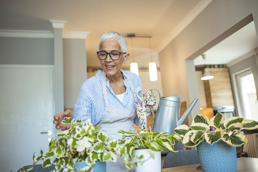 Senior Woman With Green Plants and Flowers at home. Senior Woman Caring for House Plant. Woman Taking Care of Plants at Her Home Portrait of Elderly Woman Gardening at Home. Retired Female Care for Her Plants
