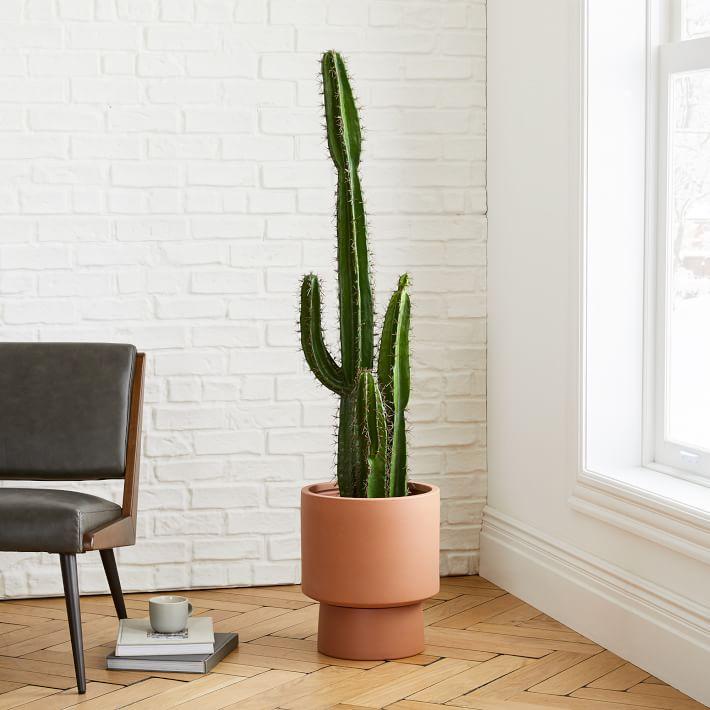 Sedona Faux Cactus