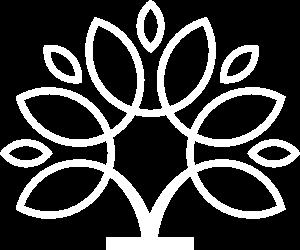 Arbre symbole de Koncilio