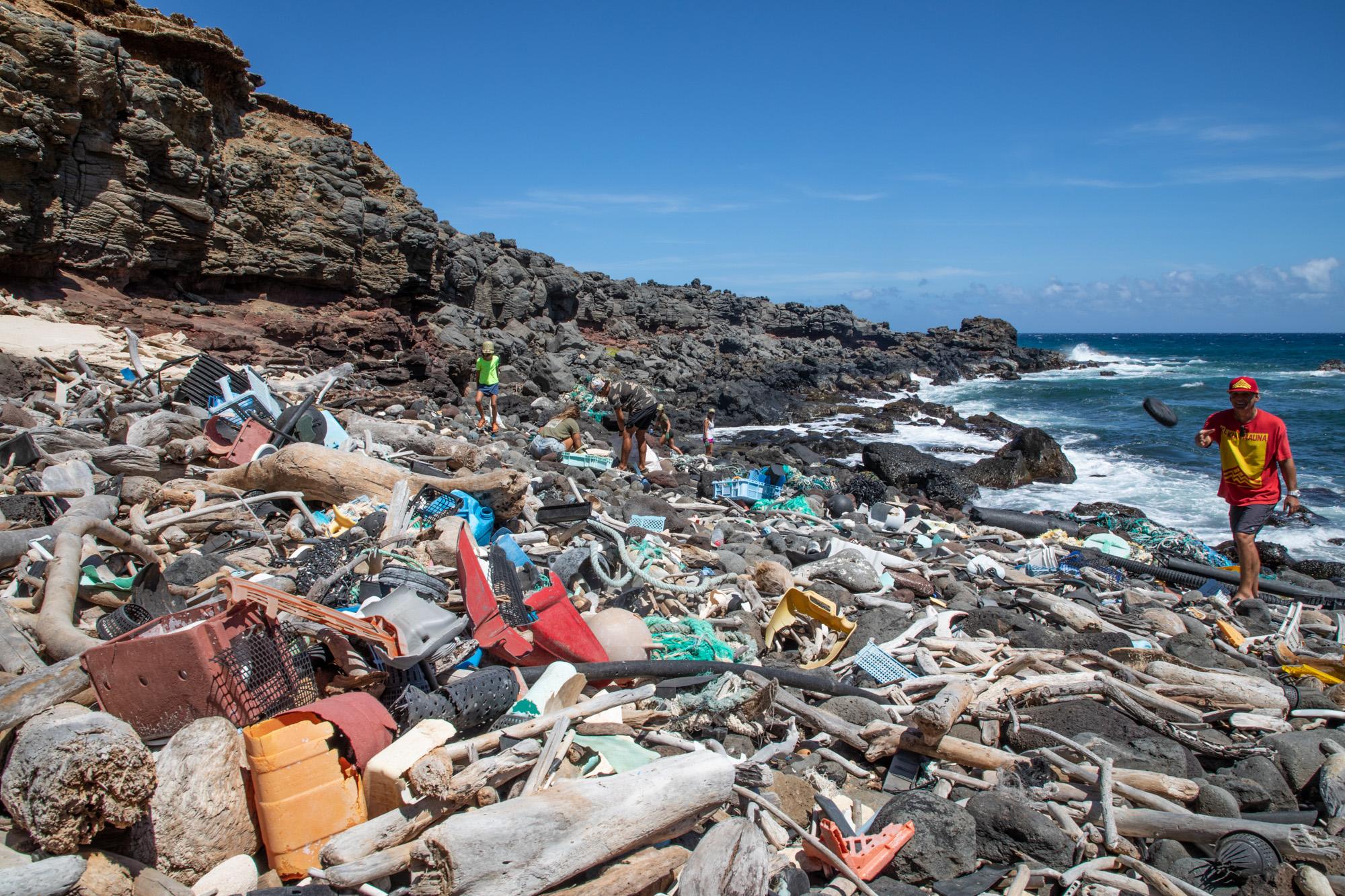 Cleanups, Marine Debris, & Plastics