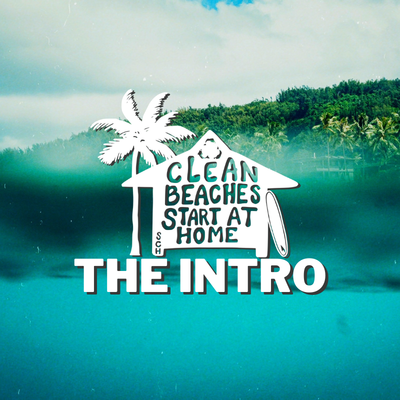 Clean Beaches Start At Home: The Intro