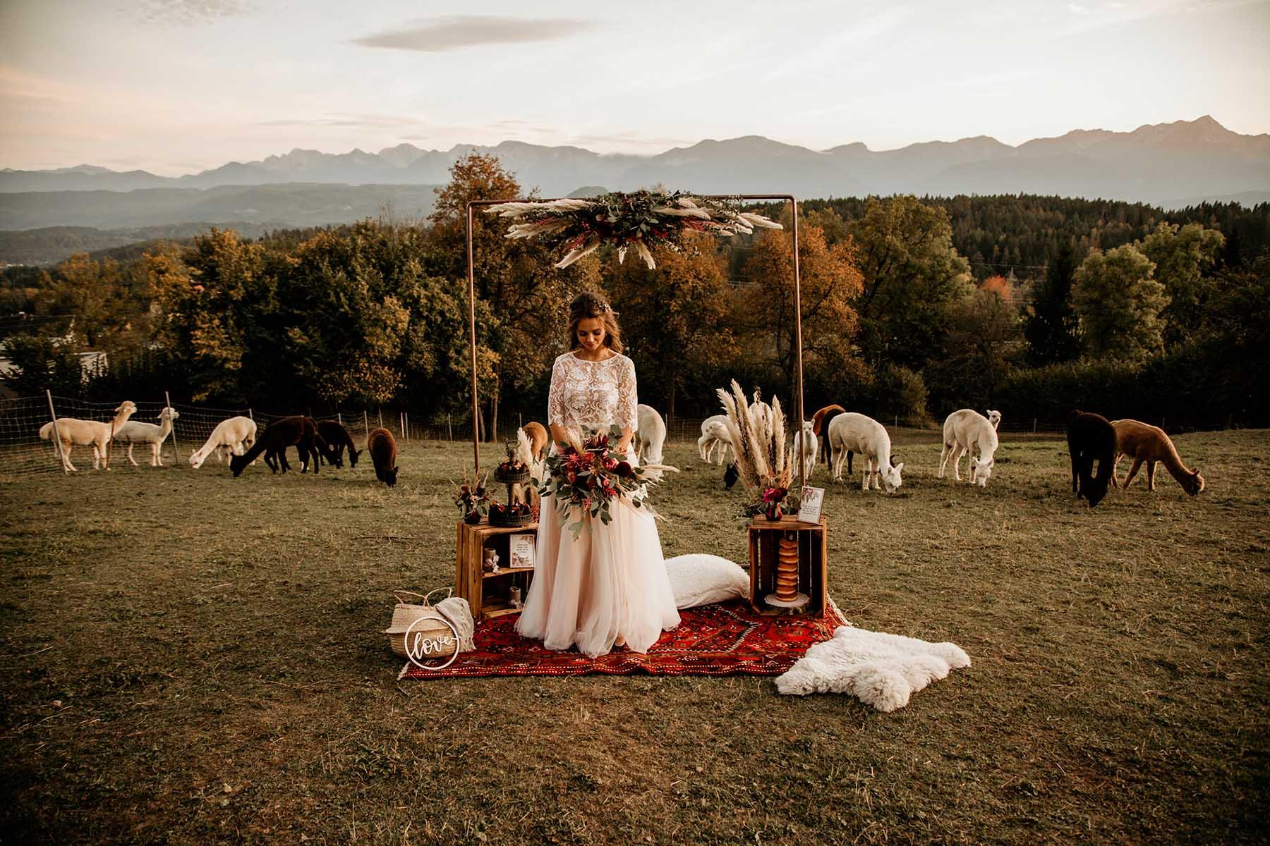 Boho-Hochzeit auf der Alpaka-Wiese
