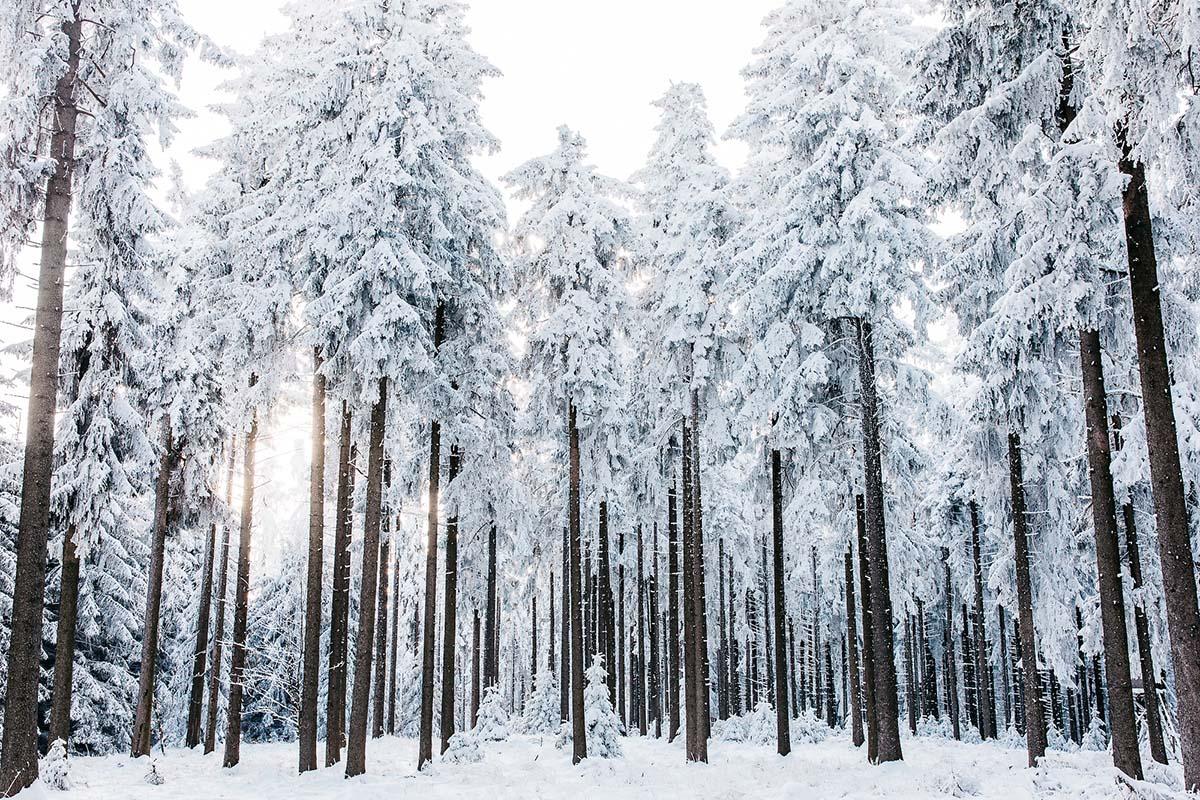 10 Gründe für eine Winterhochzeit in Österreich