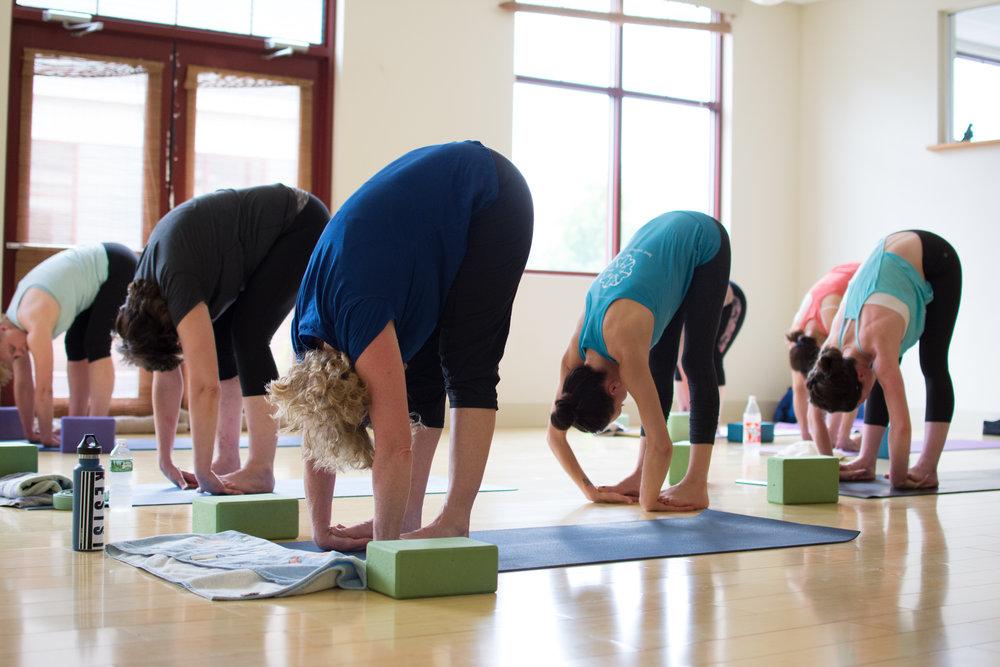 Greener Postures Yoga