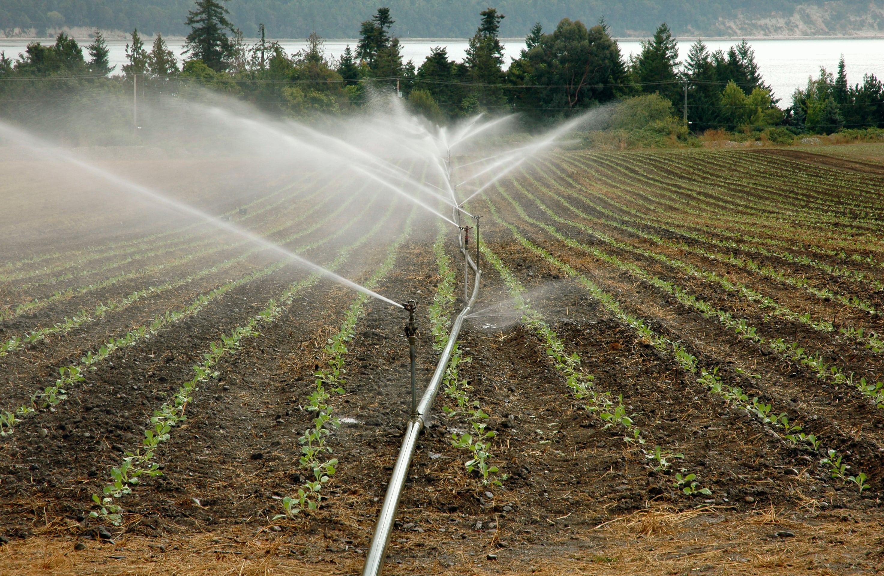 Taşınabilir yağmurlama sistemi