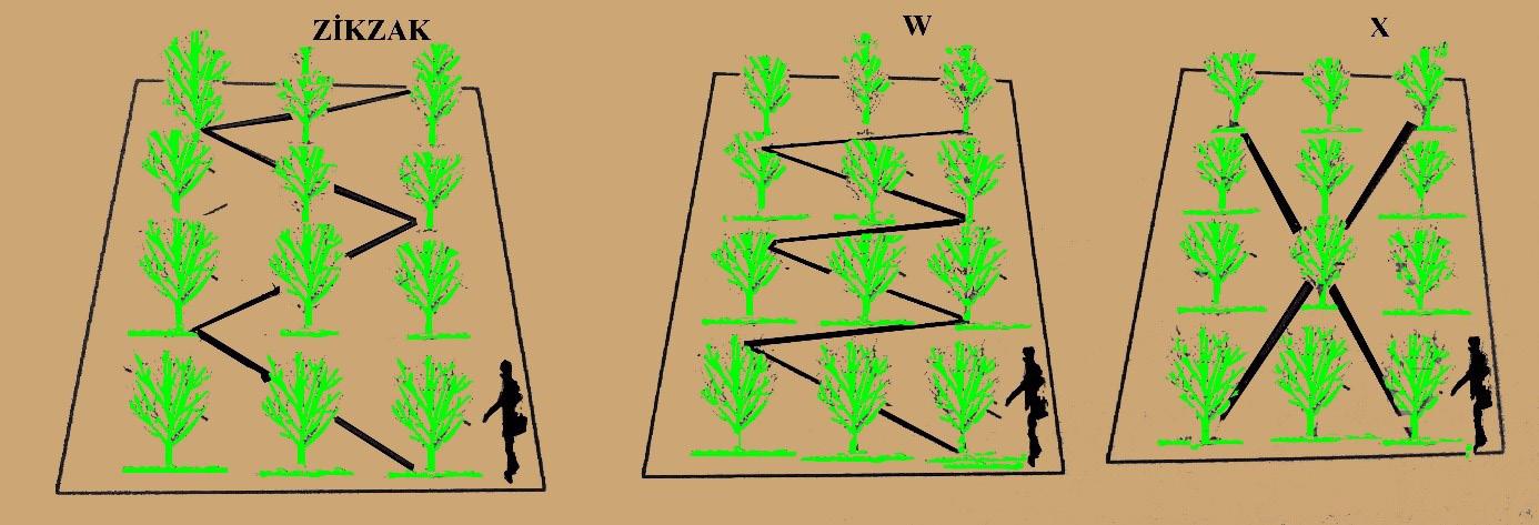 Bahçe içerisinde örnekleme metodu