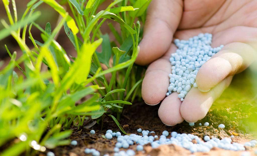 Bitkilerin temel besin maddeleri olan azot, fosfor ve potasyumu, eşit yada farklı oranlarda içeriğinde bulunduran bu gübreler, bitki gelişimi için çok önemlidir.
