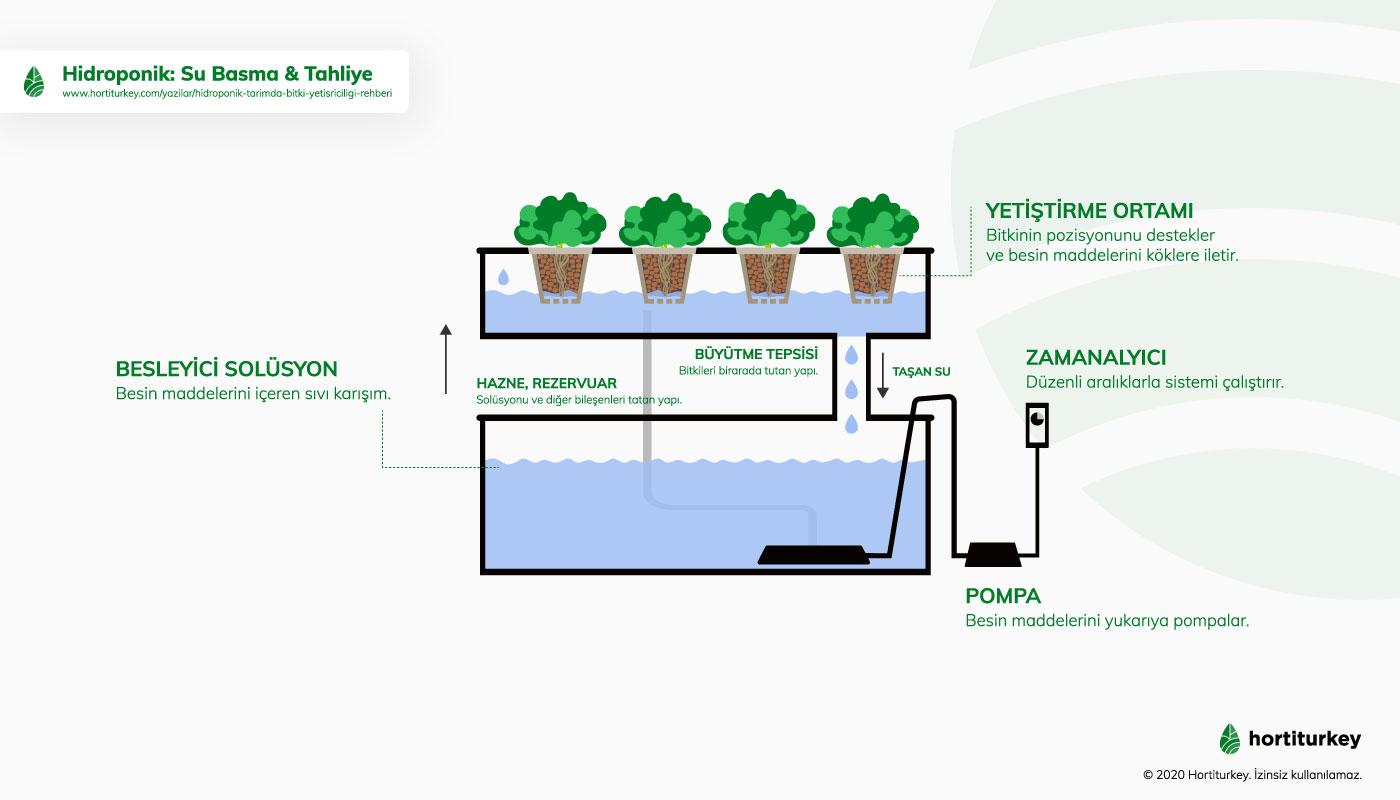 Hidroponik üretimde, Su Basma &Tahliye Etme Sistemi (Flood and Drain)