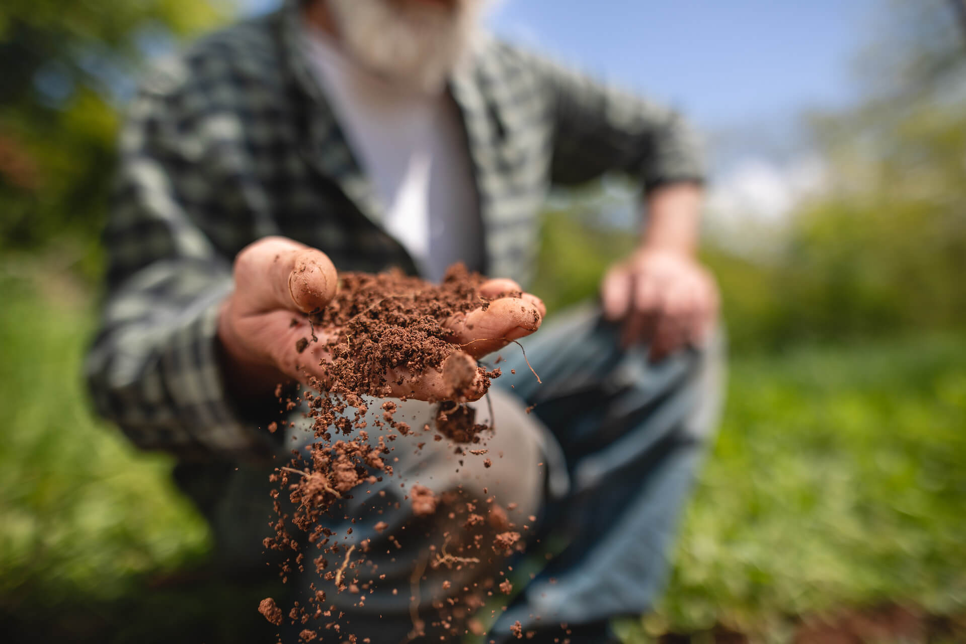 Topraklar birçoğumuz için tohum, gübre ve zirai ilaç kullanılarak ürün alınan alanlar olarak görülmektedir. Ancak topraklar bundan çok daha fazlasıdır.