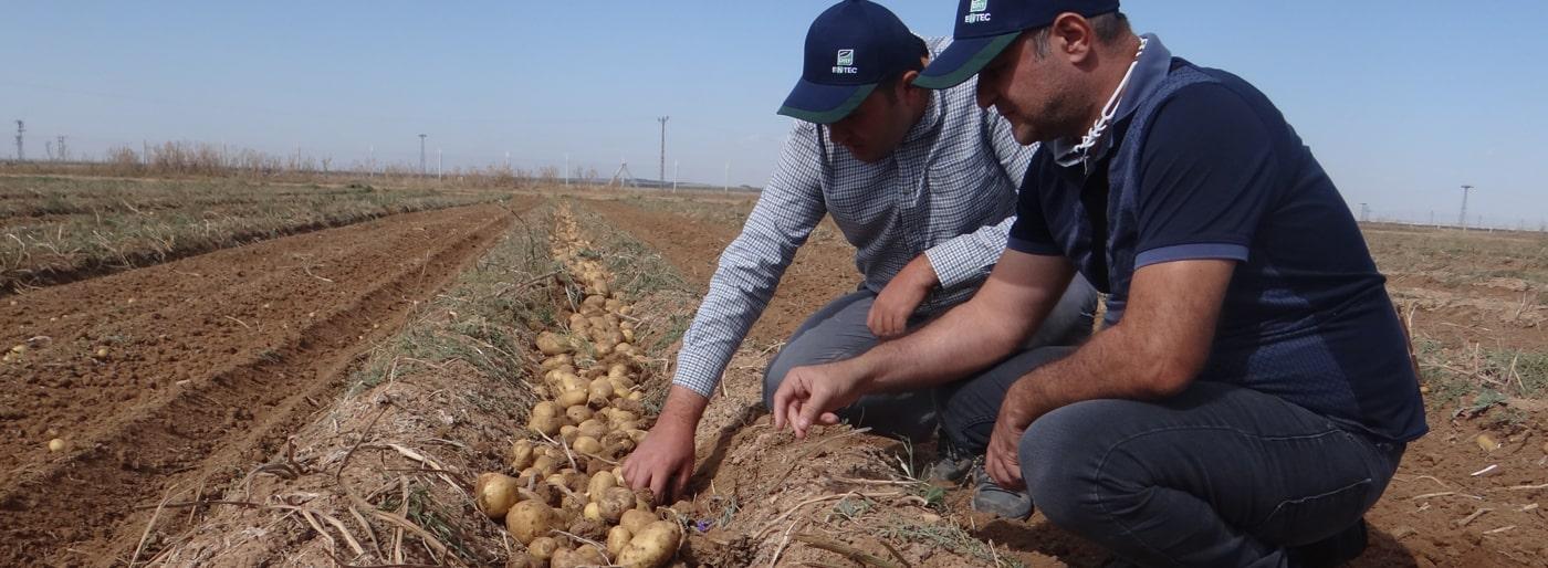 Doktor Tarsa teknik ekipleri Konya'da patates üreticileriyle buluştu.