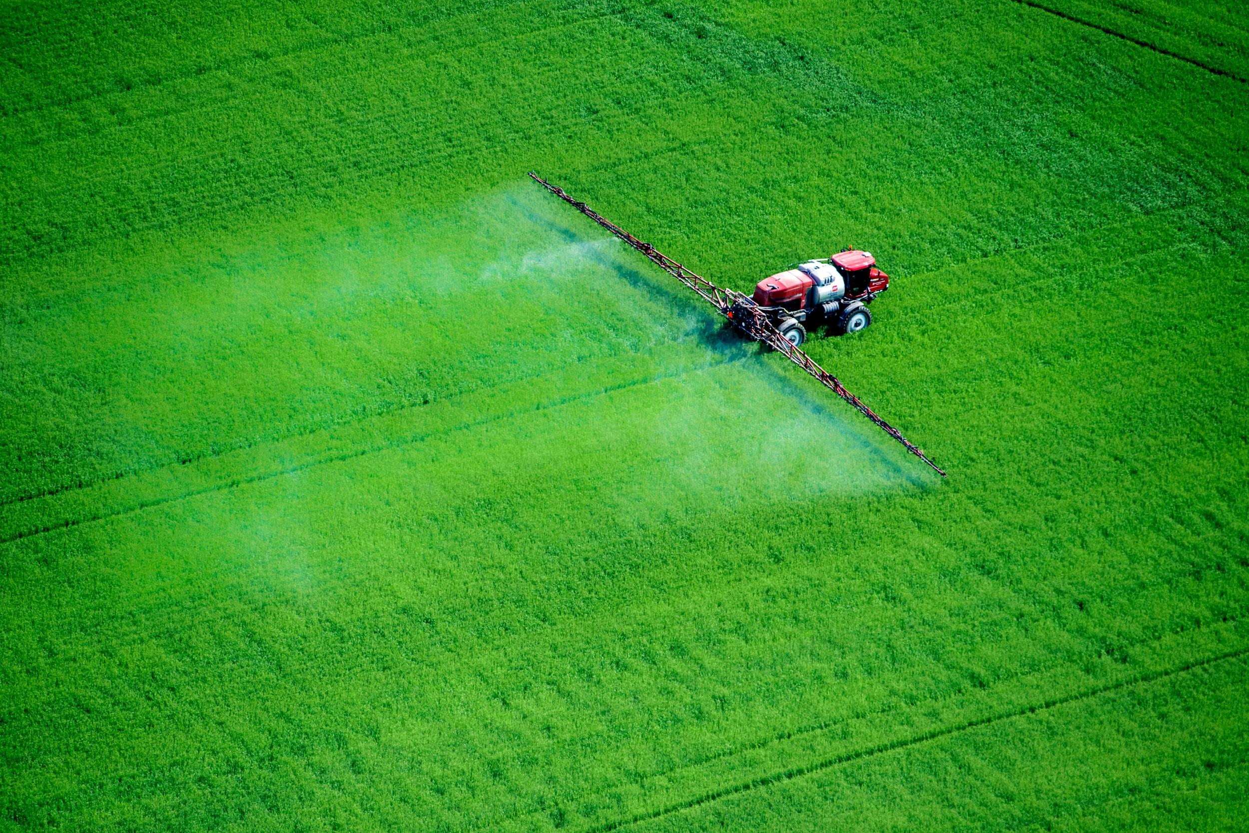 Pestisitler hasara ve ekonomik kayba neden olan, hastalık bulaştıran veya üreten haşere hayvanlar ve böcekler, istenmeyen bitkiler veya mikroorganizmalar gibi canlı organizmaları hedef alır.