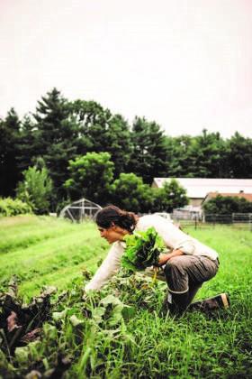 Rejeneratif tarımla uğraşan bir üretici