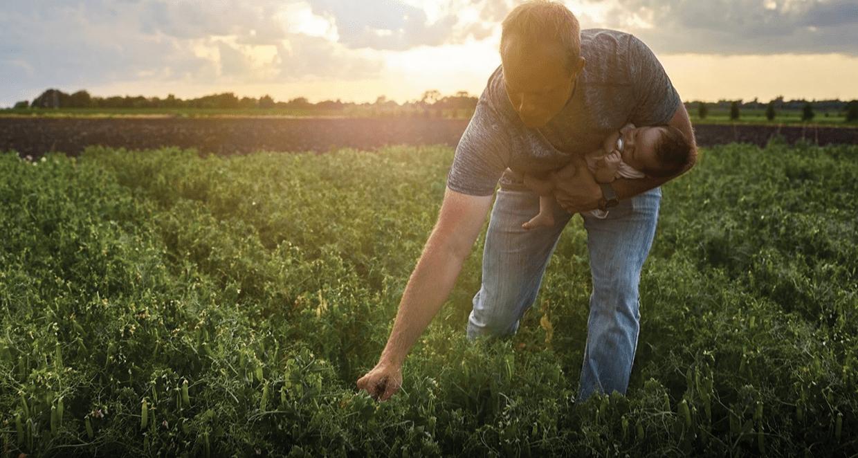 """""""Rejeneratif Tarım"""" bir pazarlama terimi değildir, tam aksine uzmanların ciddiye alması gereken bir harekettir."""