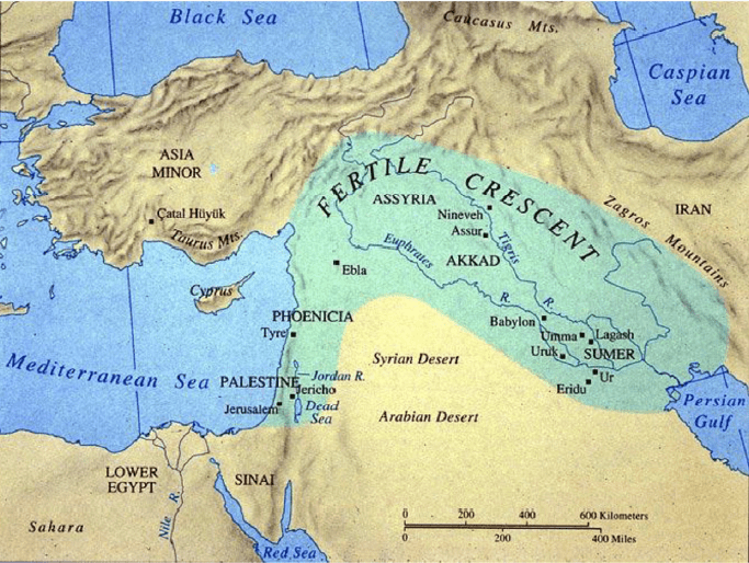 Buğdayın ilk tarımının doğduğu topraklar Mezapotamya