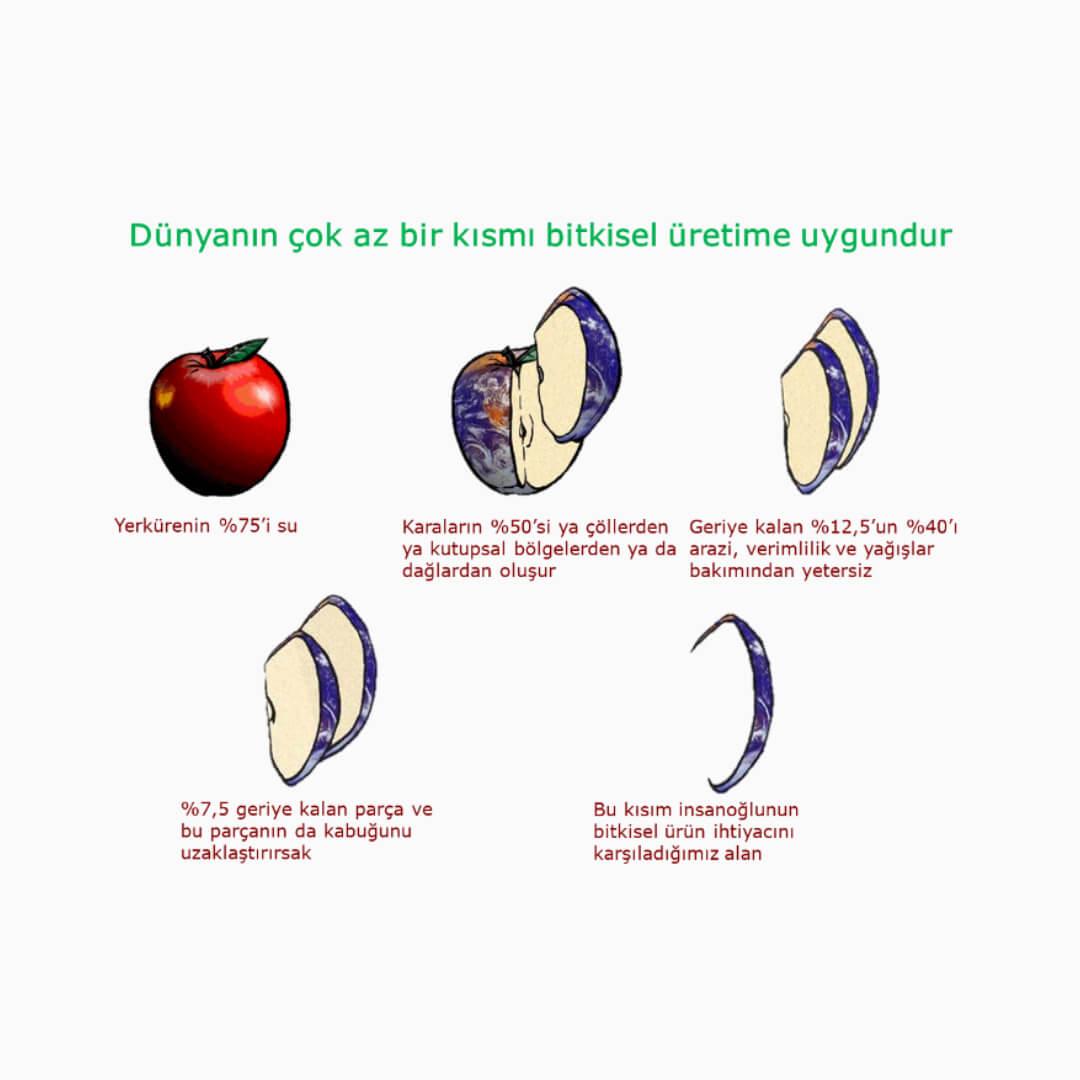 Dünyanın bitkisel üretime elverişli arazileri hakkında elma şekli üzerinden bir görselleştirme.